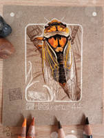 44 - Cicada by Loisa