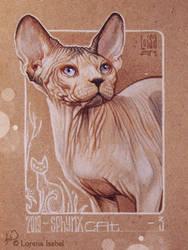 03 - Sphynx Cat