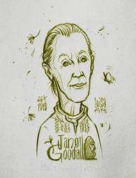 Jane Goodall by Loisa