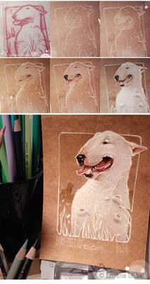 BullTerrier -Step by step-