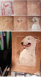 BullTerrier -Step by step-