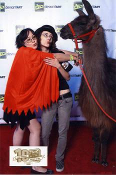 Llama Sluts