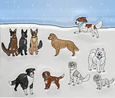 DARPG Winter social 2018 by Waggintails-Rescue
