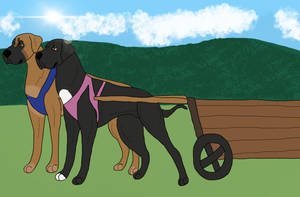 Tides and Cinder Brace Draft Title  by Waggintails-Rescue
