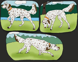 Tango Tracking titles  by Waggintails-Rescue