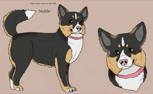 OSK Noble Heart of MK DPK by Waggintails-Rescue