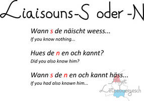 Liaisouns-S or -N