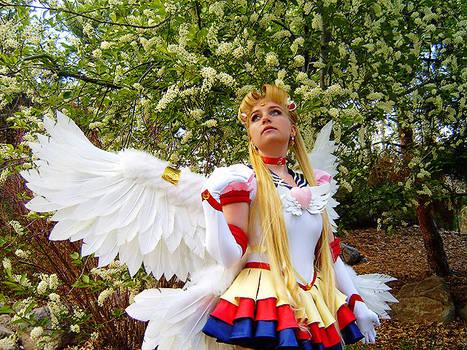 Eternal Sailor Moon Cosplay