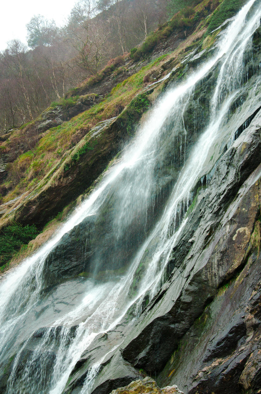 Powerscourt Waterfall by canyonlord
