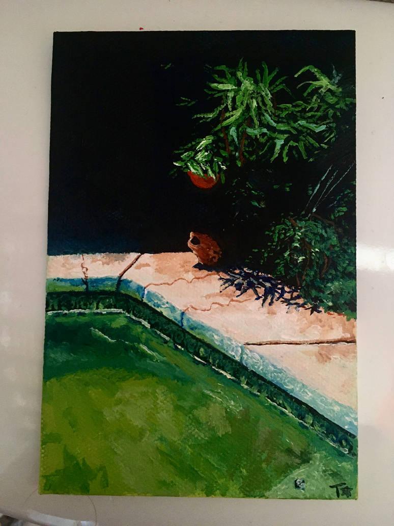 Backyard Painting!
