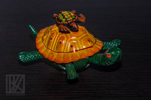 My Little Tortoise . . . ? by kaioian