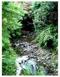 Secret Garden Stream