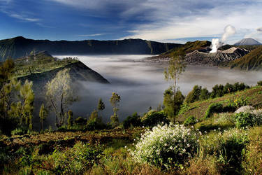 bromo : another view by semihardjo