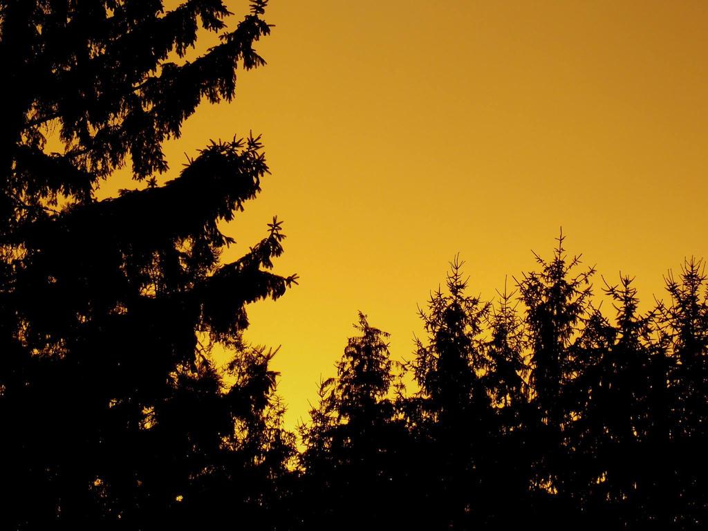 Sunset brightness by ItisjustYuna