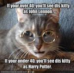 John Lennon Kitty