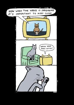 Cat Virus