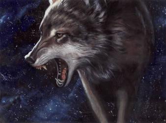 wolf by designer356