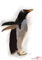 penguin by anone52