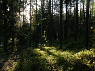 Nature 349