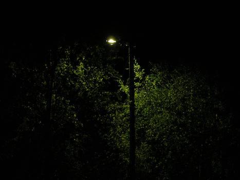 Nightview 001