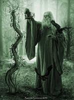 The Wizard by Ruskatukka