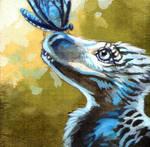 The Budgeraptor