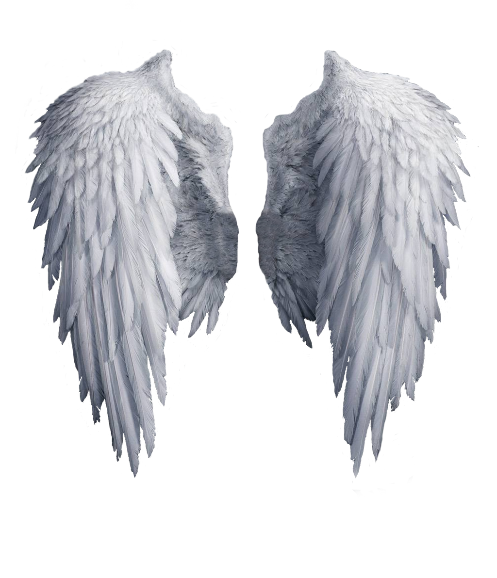 Angel wings stock PNG