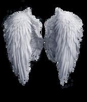 Angel wings stock PNG