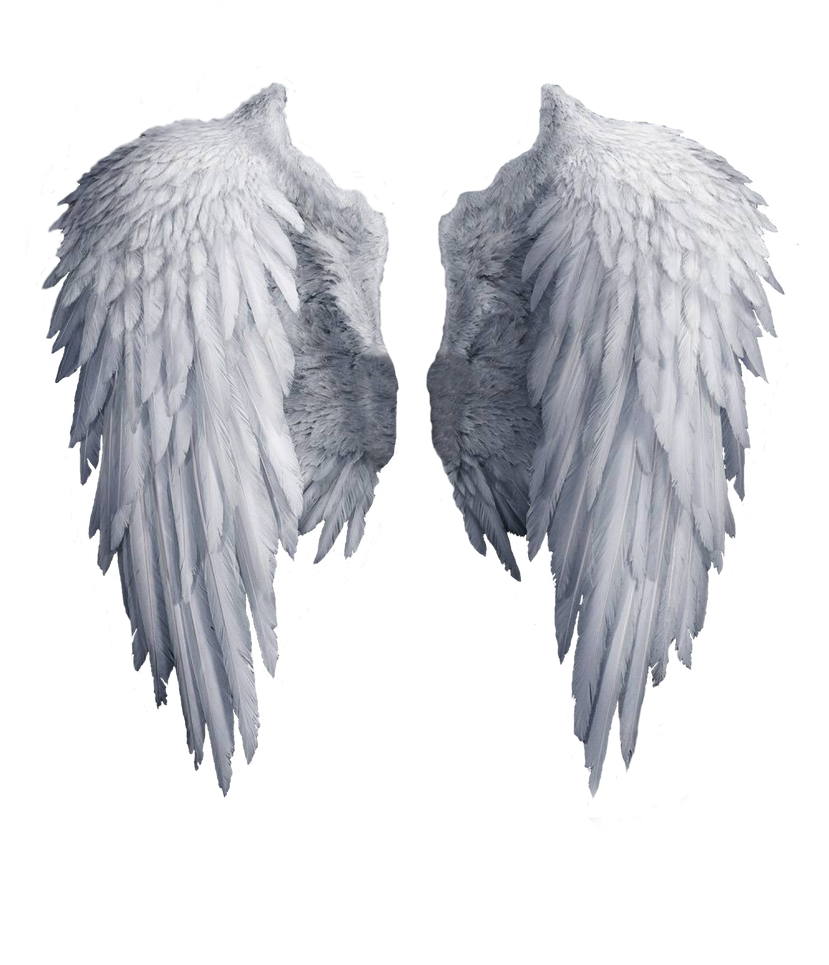 how to make realistic angel wings