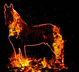 the crackling of the fire