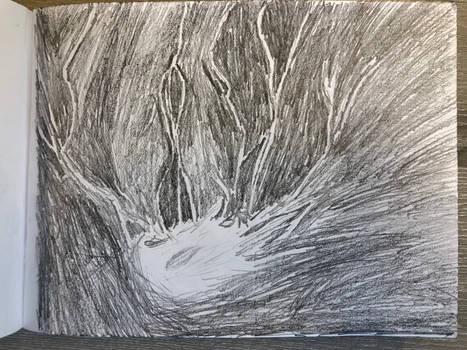 20191018114836 - Lightning - The Birth of Ter