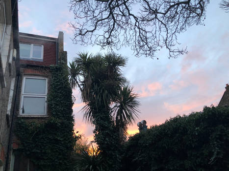 2021.02.02 Sunset
