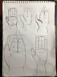 Palms Practice