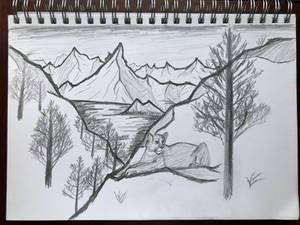 Landscape Practice - 200th Deviation