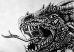 Dragon by Sheynar-Naelax