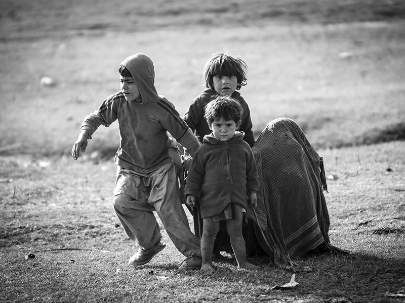 Fight Hide Flee by InayatShah