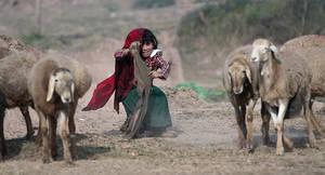 Parting Of The Sheep by InayatShah