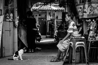 A Cat May Look At A King by InayatShah