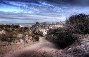 Rose Valley - II by InayatShah