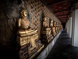 Well Dressed Buddhas