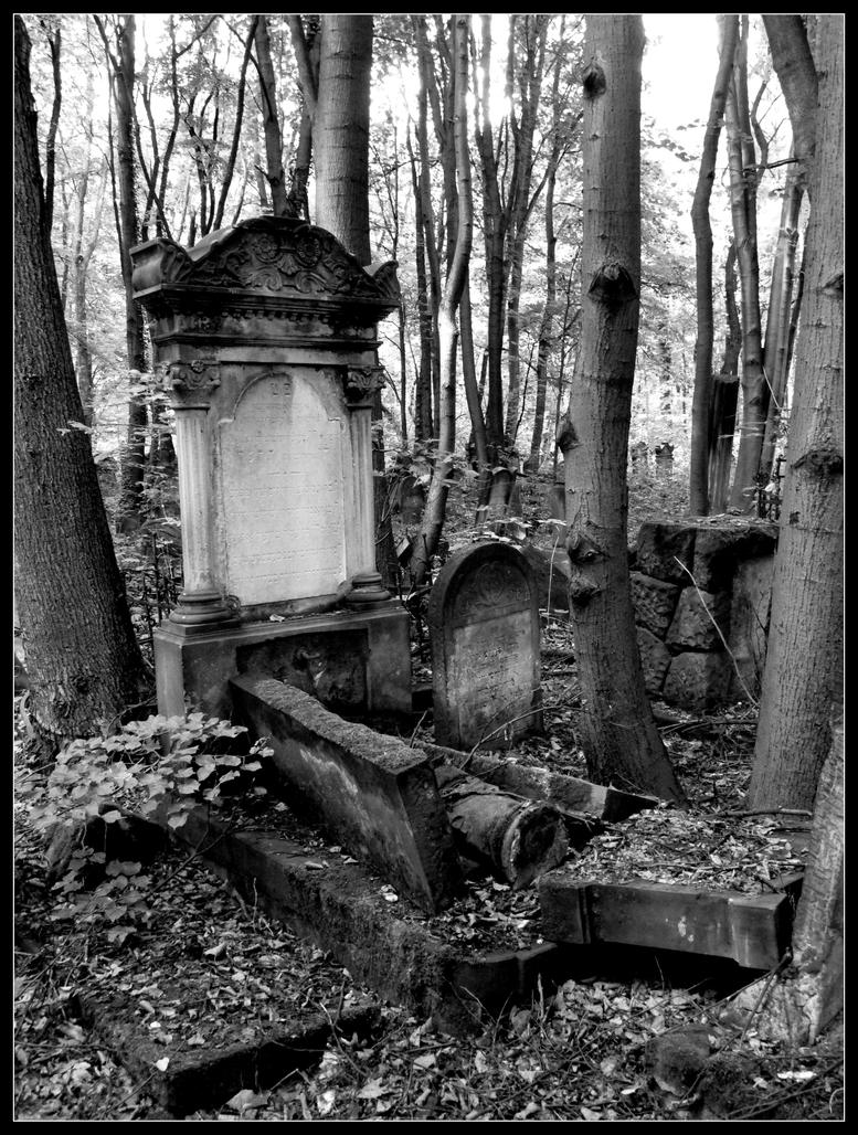 old grave in the forest by angel-ireth