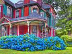 My Fantasy-DA HOUSE