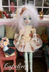 Cafuliett -Monster High Doll Frankie Stein Repaint