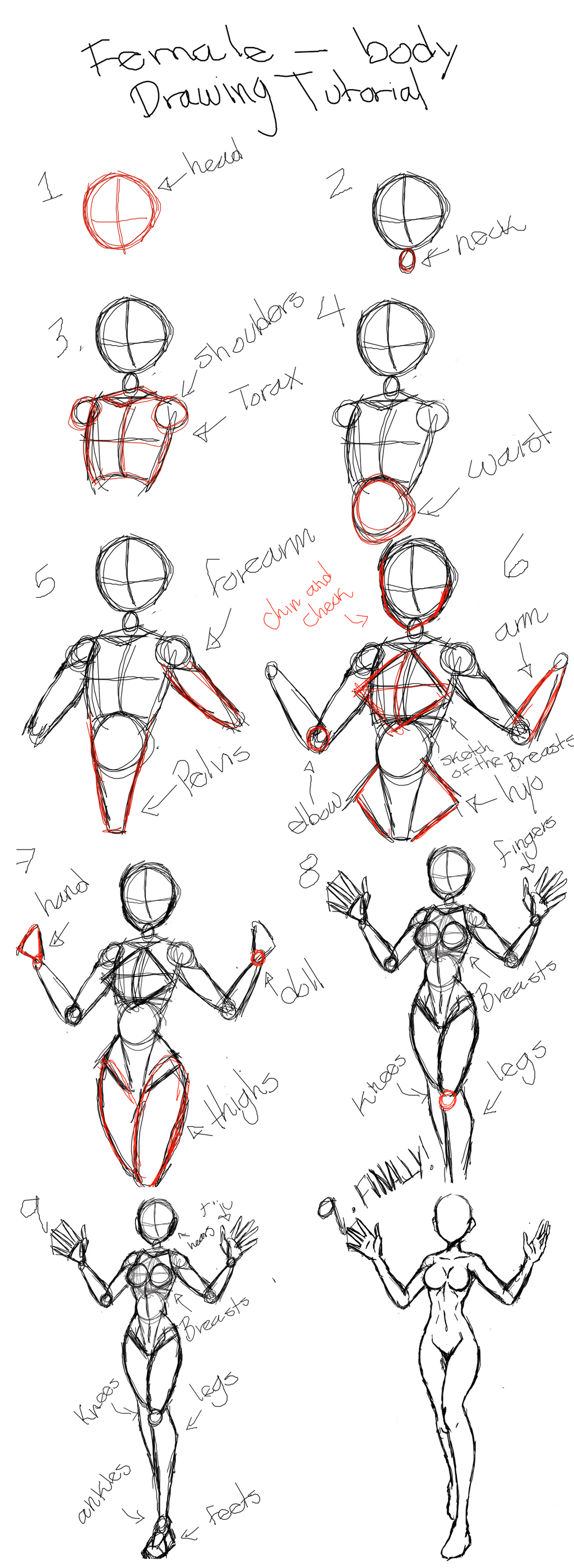 female body drawing tutorial by klfunsskxd on deviantart