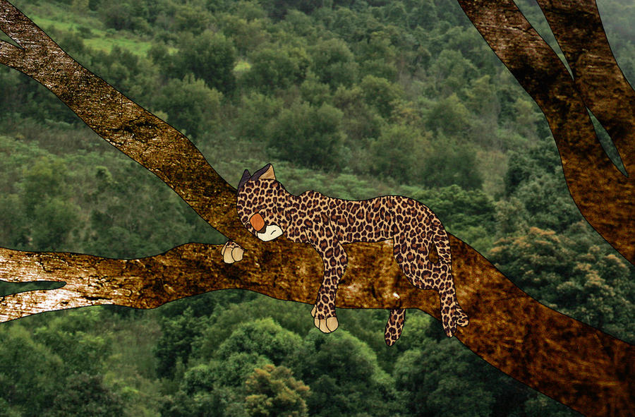 Jungle canopy by Alondra-chui ... & Jungle canopy by Alondra-chui on DeviantArt