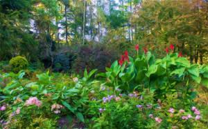 Forest Garden 2