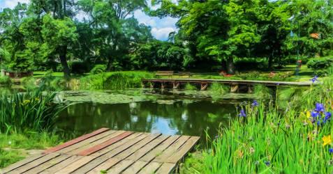 Garden pond - revisited