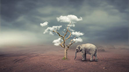 Save Nature Photo Manipulation