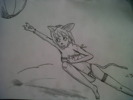 Neko-chan on the beach