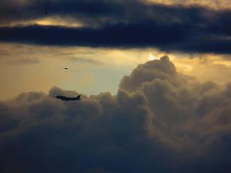 Accompanied in flight by Shadowink1955